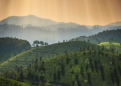 munnar photography tour